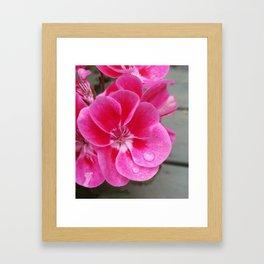 Pink raindrops Framed Art Print