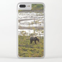 Grizzly bear at sundown Clear iPhone Case