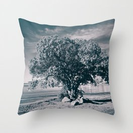 The Pohutukawa, New Zealand's Christmas Tree. Throw Pillow