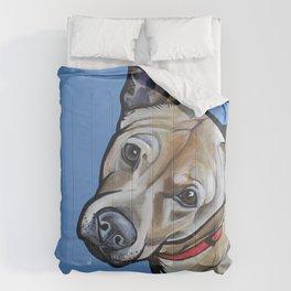 Fenway Comforters