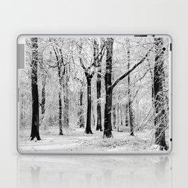Snowy Beech Trees Laptop & iPad Skin