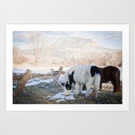 mini horses and a view Art Print