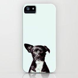 Hello Dog iPhone Case