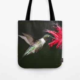 Hummingbird XV Tote Bag