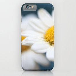 Spring Love #2 - White Marguerite Daisy Flower #decor #art #society6 iPhone Case