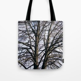 Stained Glass Tree Tote Bag