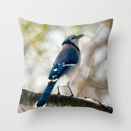 Blue Jay Calling Throw Pillow