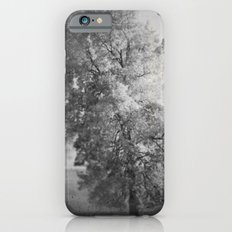 Ghost Tree iPhone 6 Slim Case