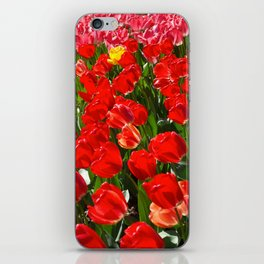 Tulips in Paris iPhone Skin