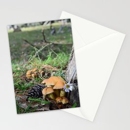 Mushrooms _ 3 Stationery Cards