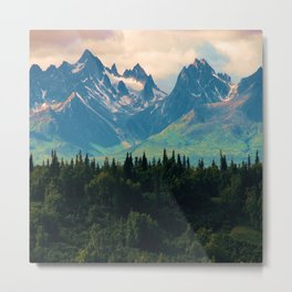 Escaping from woodland heights Metal Print