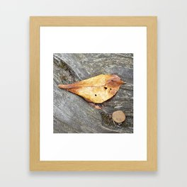 Heartful Birdie Framed Art Print