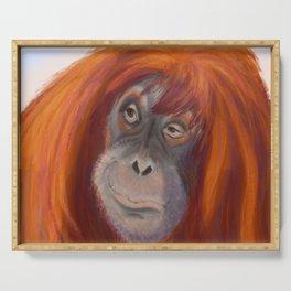 Pretty Sumatran Orangutan Portrait Serving Tray
