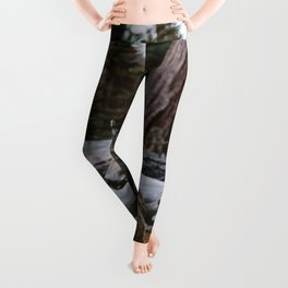 Sequoia Forest Deer Leggings