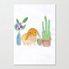 Rabbit cactus  Canvas Print