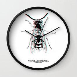 Vespula Germanica (german wasp) Wall Clock
