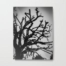 Elegant Metal Print
