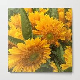 Sunflowers New York Metal Print