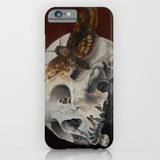 Acherontia  iPhone 6 Slim Case