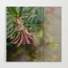 Pastels Floral Greenery Wood Wall Art