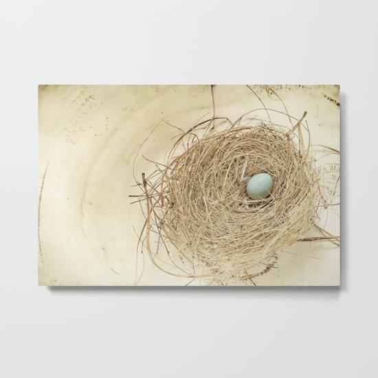 Petit Nest Metal Print