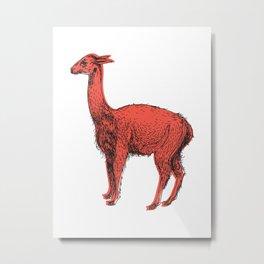 vicuña Metal Print