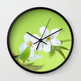 Cherry blossom tree in the green Wall Clock
