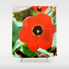 Red Portal Shower Curtain