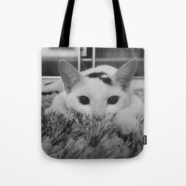 kitty ready to pounce Tote Bag
