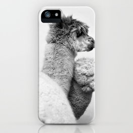 Horatio and Harry iPhone Case