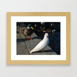 I'm Ignoring You... Animal Photography Prints Framed Art Print