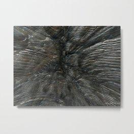 Fossil (trilobites) Metal Print