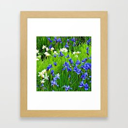 BLUE & WHITE  IRIS FLOWER GARDEN Framed Art Print