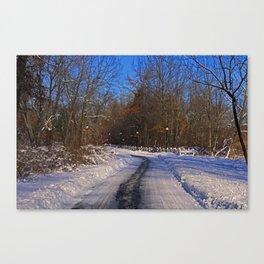 Frosty Footpath Canvas Print