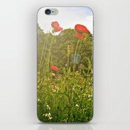 Sun kissed poppies iPhone Skin