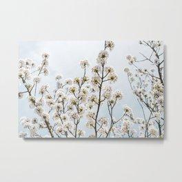 Pastel Springtime Flora Metal Print