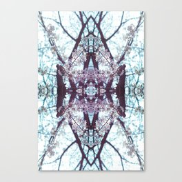 Early cherry blossoms Canvas Print