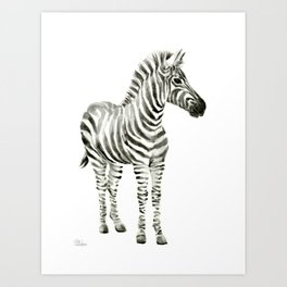 Zebra Watercolor Baby Animals Art Print