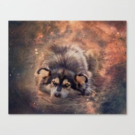 Bright-eyed dreamer Canvas Print