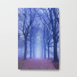 Path in a dark and foggy forest in The Netherlands Metal Print