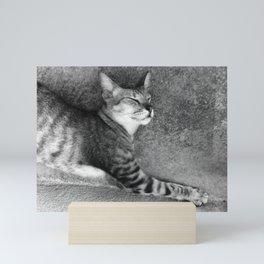 Kitty Mini Art Print