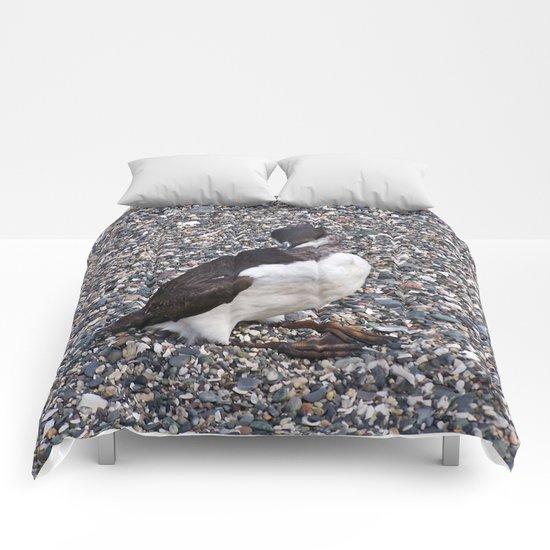 Razorbill Walking on the Beach Comforters