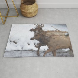 Watercolor Elk Bull 72, Estes Park, Colorado, Winter Wading Rug