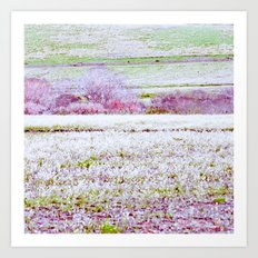 Flower Landscape Art Print