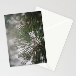 Photo of snow capped Christmas tree in a winter wonderland landscape in Almere, the Netherlands | Fine Art Colorful Travel Photography |  Stationery Cards