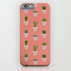 Cacti & Succulents iPhone 6s Slim Case
