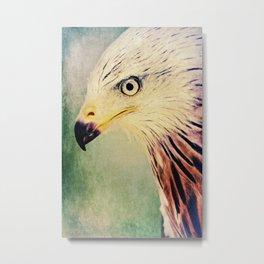 Red Kite Art Metal Print