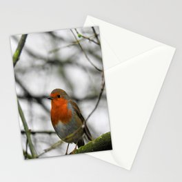 Little English Robin Stationery Cards