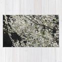 Blooming wild plum by sonqblack
