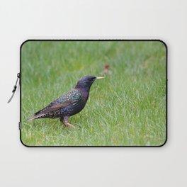 Colourful bird Laptop Sleeve